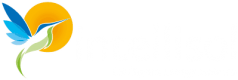 logo intellisol enkel kolibrie in zon